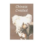 Chinese Crested (Hairless) Mini Poster Print