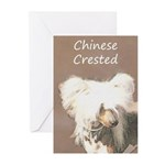 Chinese Crested (Hairles Greeting Cards (Pk of 10)