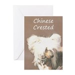 Chinese Crested (Hairles Greeting Cards (Pk of 20)