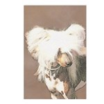 Chinese Crested (Hairless Postcards (Package of 8)