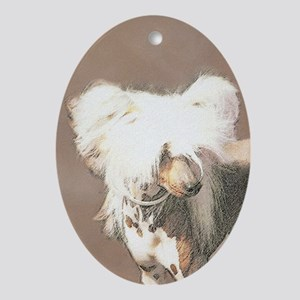 Chinese Crested (Hairless) Oval Ornament