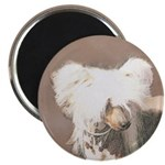 Chinese Crested (Hairless) Magnet