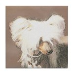 Chinese Crested (Hairless) Tile Coaster