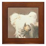 Chinese Crested (Hairless) Framed Tile