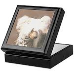 Chinese Crested (Hairless) Keepsake Box