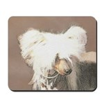Chinese Crested (Hairless) Mousepad