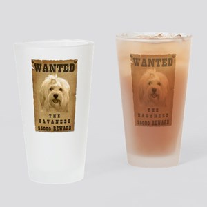 """Wanted"" Havanese Drinking Glass"