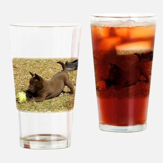 Australian Kelpie pup 9P022D- Drinking Glass