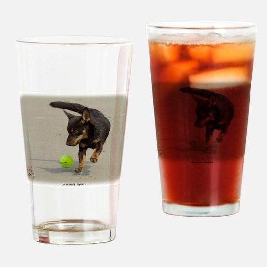 Lancashire Heeler 9R056D-248 Drinking Glass