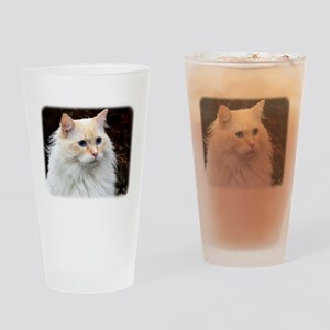 Ragdoll Cat 9W082D-020 Drinking Glass