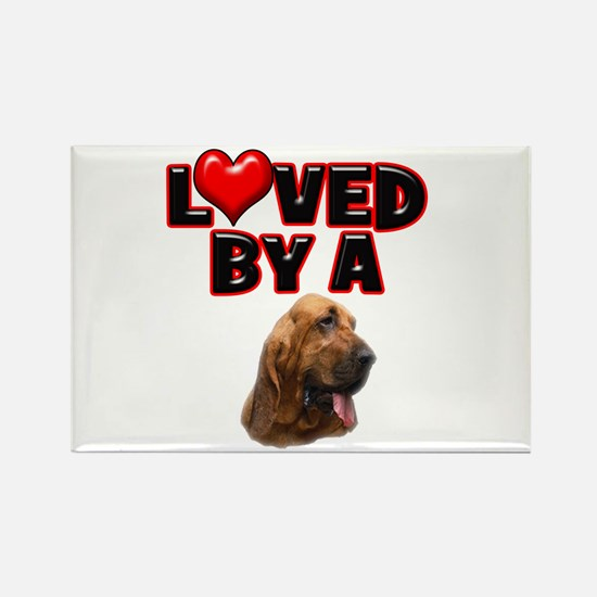 Loved by a Bloodhound Rectangle Magnet