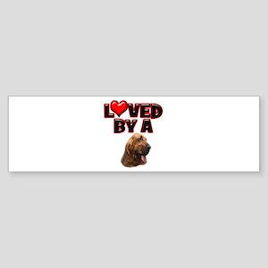 Loved by a Bloodhound Sticker (Bumper)