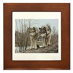 Wolf Portrait Framed Tile