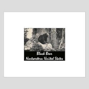 American Black Bear Small Poster