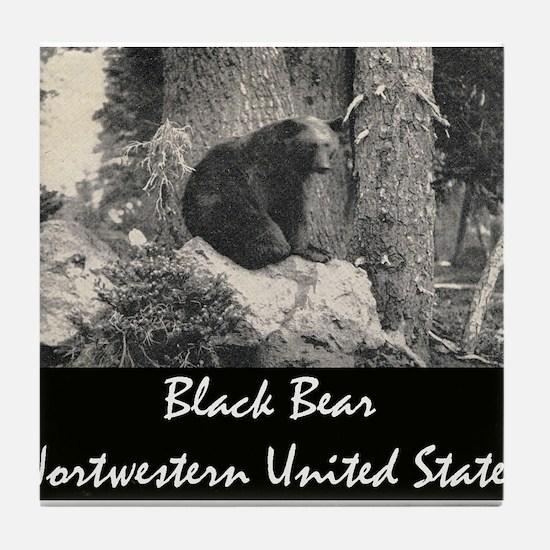 American Black Bear Tile Coaster
