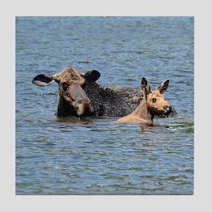 Cow & Calf Moose swimming Tile Coaster