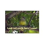 Baby Bird Magnet