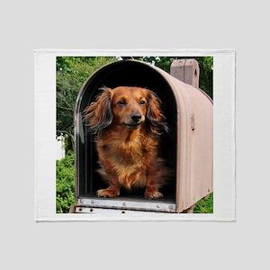 Mailbox Throw Blanket