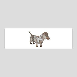 Speckled Dachshund Dog 42x14 Wall Peel