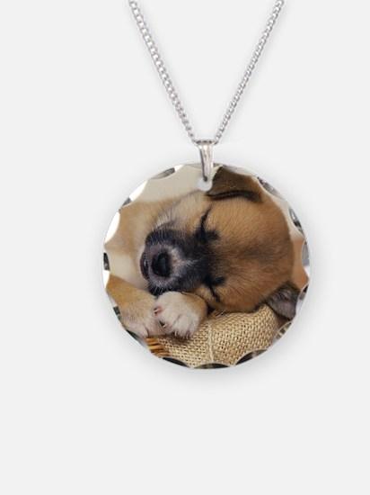 Sleeping Puppy Necklace