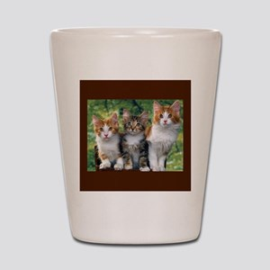 3 Cats Shot Glass