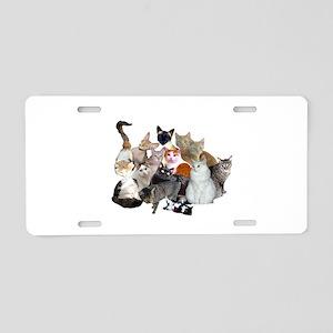Kitty Pile Aluminum License Plate