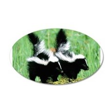 Two Skunks 22x14 Oval Wall Peel