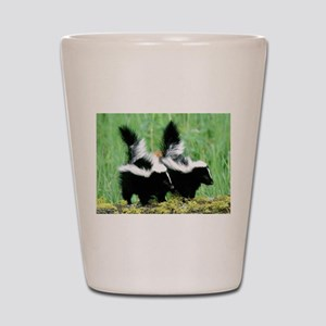 Two Skunks Shot Glass