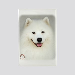 Samoyed 9Y566D-019 Rectangle Magnet