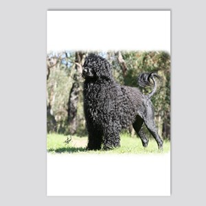 Portuguese Water Dog 9Y510D-008 Postcards (Package