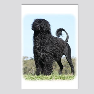 Portuguese Water Dog 9Y510D-061 Postcards (Package