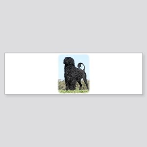 Portuguese Water Dog 9Y510D-061 Sticker (Bumper)