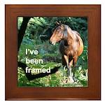 Pony framed tile