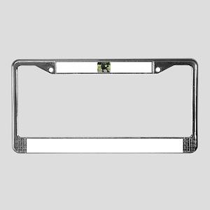Poodle Standard 9R063D-090 License Plate Frame