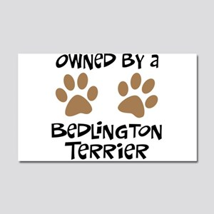 Owned By A Bedlington Car Magnet 20 x 12