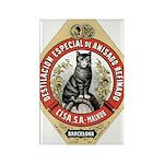 Barcelona Cat Rectangle Magnet (10 pack)