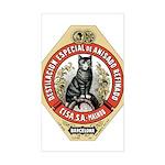 Barcelona Cat Sticker (Rectangle)