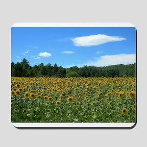 Sunflower Fields Mousepad