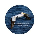 American Great White Pelican Button
