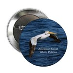 "American Great White Pelican 2.25"" Button"