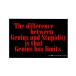 Genius and Stupidity Rectangle Magnet (100 pack)