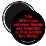 Genius and Stupidity Magnet