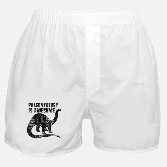 Paleontology Is Awesome Boxer Shorts