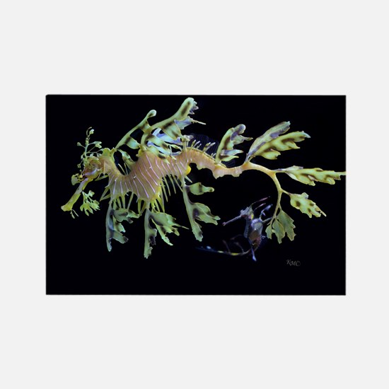 Leafy Seadragon with Weedy Se Rectangle Magnet