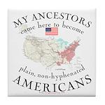 Just plain American Tile Coaster