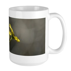 Tahquitz Canyon Wildflowers. Large Mug