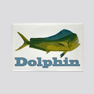 Record Dolphin Rectangle Magnet
