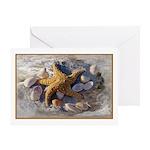 Star Fish & Seashells Greeting Card