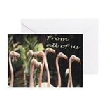 From All Of Us - flamingos Greeting Cards (Pk of 2