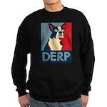 Derp Derp Derp Sweatshirt (dark)
